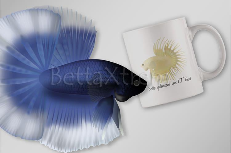 Bettas Ornamentales