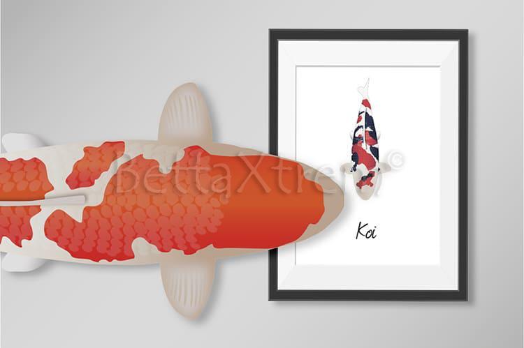Productos personalizados con ilustraciones de Koi