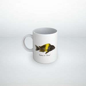 Cichlid Cup